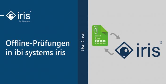 Offline-Prüfungen in ibi systems iris